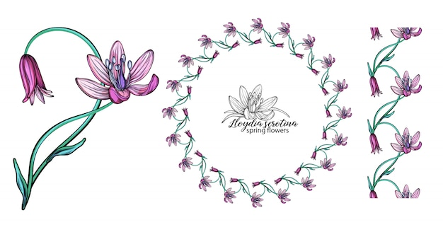 ピンクの花のセットです。花輪。花束。春の花
