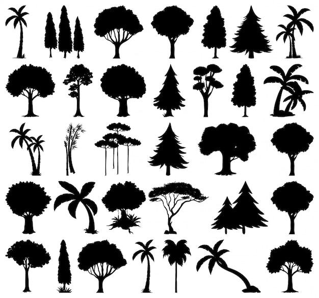 Набор растений и деревьев силуэт