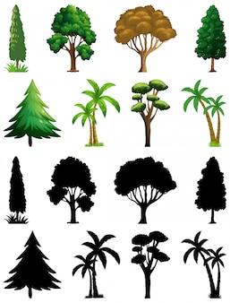 실루엣과 식물과 나무의 집합