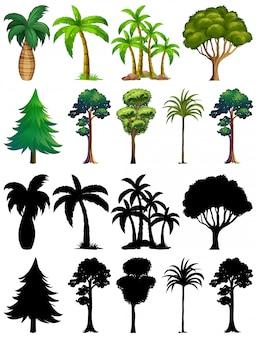 식물과 나무의 실루엣 세트