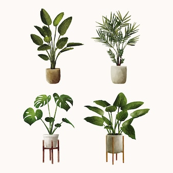 ポット水彩手描きの植物のセット