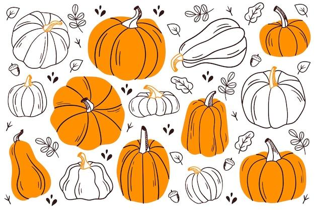 호박 세트입니다. 다양한 모양과 색상의 호박. 추수 감사절 디자인입니다. 가을 호박.