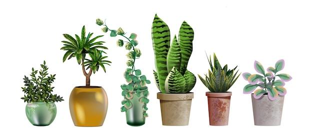 인테리어 디자인 및 장식을위한 현실적인 상세한 집 또는 사무실 식물의 집합 가정이나 사무실의 인테리어 장식을위한 열대 및 지중해 식물.