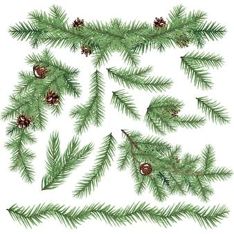 흰색 절연 현실적인 전나무 가지의 집합입니다. 크리스마스 트리. 벡터 일러스트 레이 션.