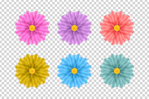 装飾と透明な背景を覆うための現実的な花のセットです。