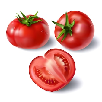 tomato vectors photos and psd files free download