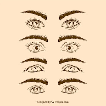 現実的な手描きの目と眉のセット