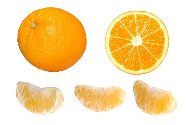 Набор реалистичного апельсина на белом