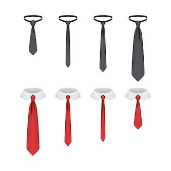 分離された現実的なネクタイのセット
