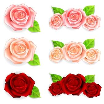 Набор красных, розовых и бежевых роз с зелеными листьями