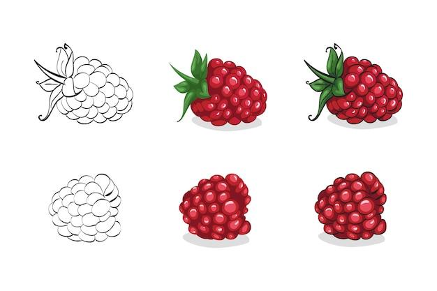 Набор красной малины с листьями, изолированные на белом