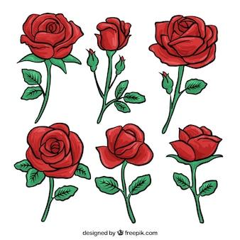 赤いバラの手を描いたセット
