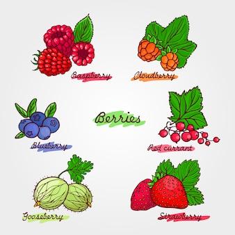 Набор спелых и милых рисованной ягод.
