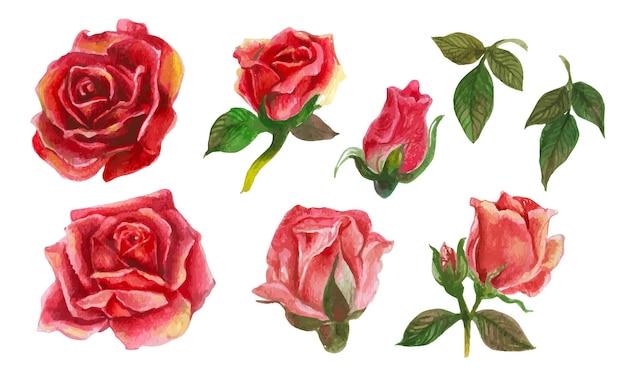 Набор розовых акварельных элементов.