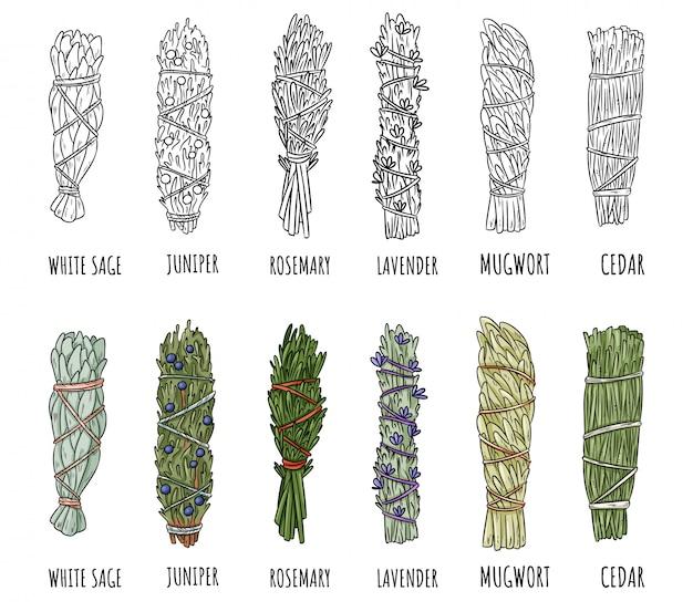 세이 지와 허브 세이 지 얼룩 스틱 번들의 집합입니다. 세이지, 로즈마리, 라벤더, 삼나무, 주니퍼, 쑥
