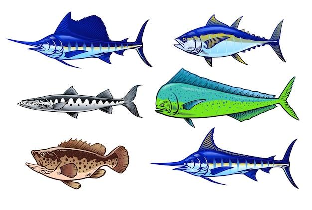 Набор морской дичи рыбы