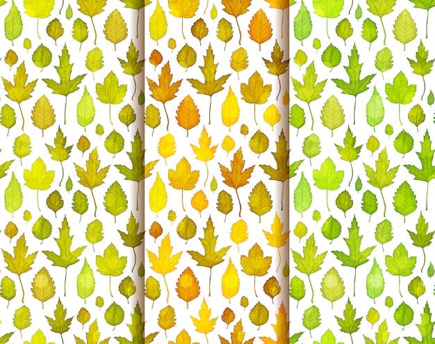 カラフルな葉とのシームレスなパターンのセット