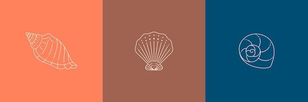 トレンディな最小限の線形スタイルの貝殻アイコンのセット。巻き貝、カタツムリ、ホタテ、カキのベクトルイラスト、ウェブサイト、tシャツのプリント、タトゥー、ソーシャルメディアの投稿とストーリー