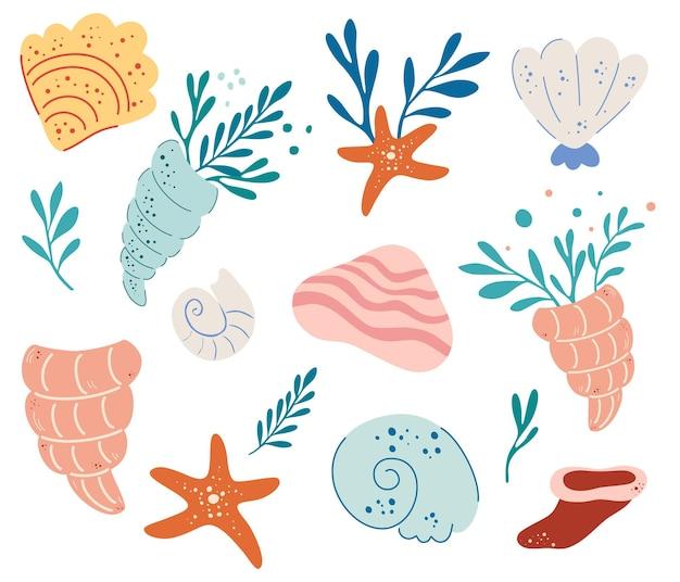 貝殻のセット。水中の世界。手描きの様々な貝殻。夏のコンセプト。海上生活。軟体動物、海藻、色とりどりの貝殻、ヒトデ。フラット漫画ベクトルイラスト。
