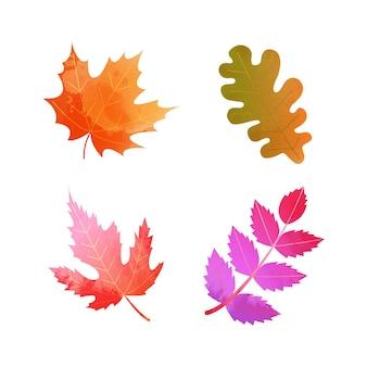 鮮やかな色の季節の紅葉のセット。白で隔離の水彩風装飾ベクトル