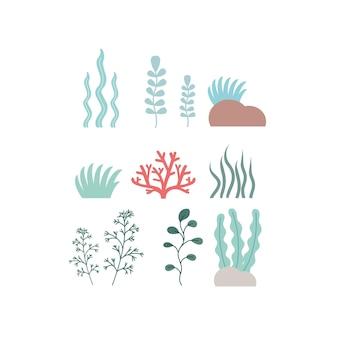 Набор морских водорослей и кораллов на белом фоне. клипарт водоросли и морские растения, набор иконок. векторные иллюстрации шаржа.