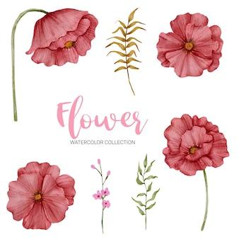 Набор отдельных частей и собрать красивый букет цветов в стиле акварели