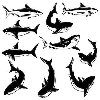 サメのイラストのセットです。ロゴ、ラベル、印刷、バッジ、ポスターの要素。画像