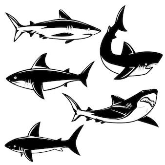 白い背景のサメのイラストのセットです。ロゴ、ラベル、エンブレム、記号の要素。画像