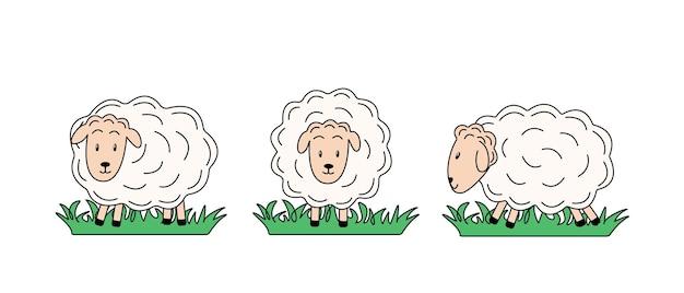 Набор овец в разных позах. векторная иллюстрация сельскохозяйственных животных. мультяшные овцы в плоском стиле.