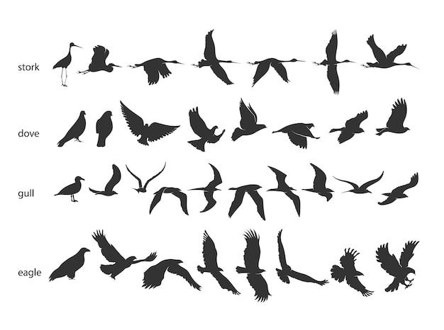 Набор силуэтов птиц в движении на белом фоне