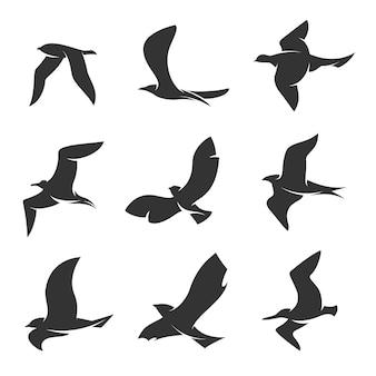 白い背景に動いている鳥のシルエットのセット