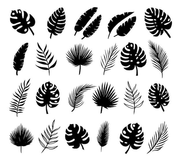 Набор силуэтов пальмовых листьев, изолированные на белом фоне. вектор eps10.