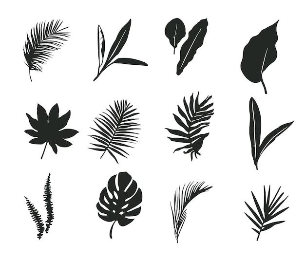 Набор силуэтов пальмовых листьев