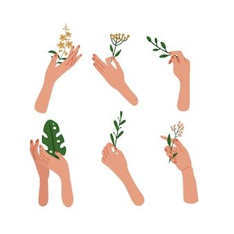 化粧品に使用される6つの手描きの女性のエレガントな手持ち植物と花のセットです。