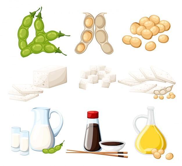 Набор соевых продуктов, молока и масла в стеклянном кувшине, соевый соус в прозрачной бутылке, тофу и бобы, органическая вегетарианская еда, иллюстрация на белом фоне страницы веб-сайта и мобильного приложения