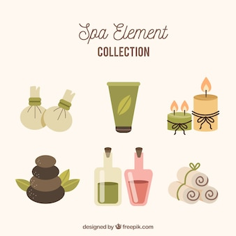 Set of spa elements in flat style