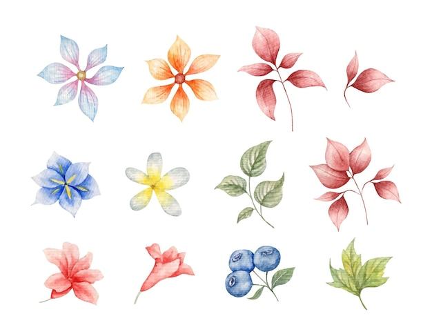 春の花と葉の要素のセット