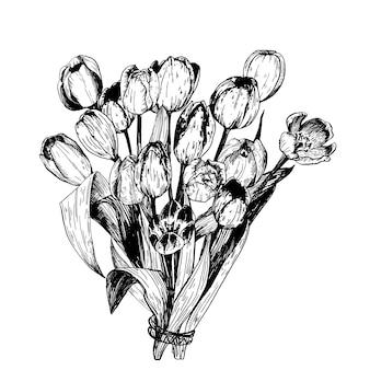 春の花のチューリップの枝のセットです。鉛筆スケッチ集イラスト