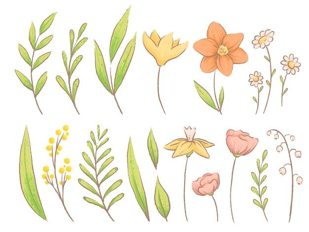 春のハーブ、植物、花のセットです。手作りの水彩画の模倣。白い背景で隔離。
