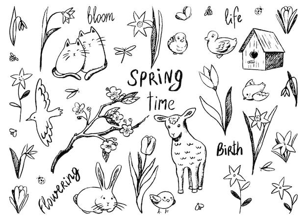 春のテーマの輪郭の落書きのセット。かわいい動物、春の花、鳥、手書きの言葉。手描きのベクターイラスト集。デザインのために白で隔離のスケッチ要素の輪郭を描きます。