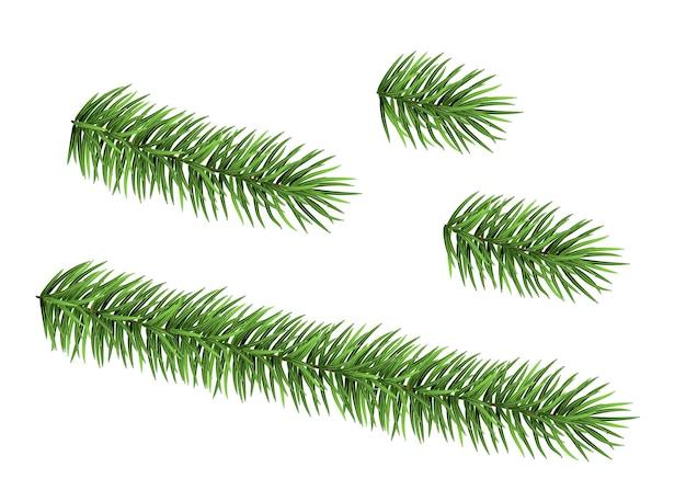 白い背景で隔離のトウヒの枝のセット緑のモミ現実的なクリスマスツリー