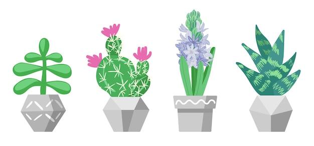 냄비에 다육 식물의 집합 가정 식물 집 정원 장식 평면 그림 흰색으로 격리