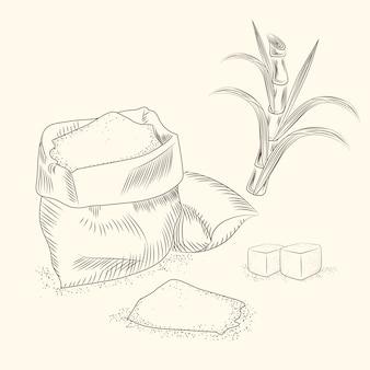 사탕 수수의 집합입니다. 손으로 지팡이 잎을 그립니다.
