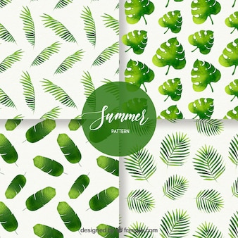 Set of summer patterns with different leaves in watercolor style