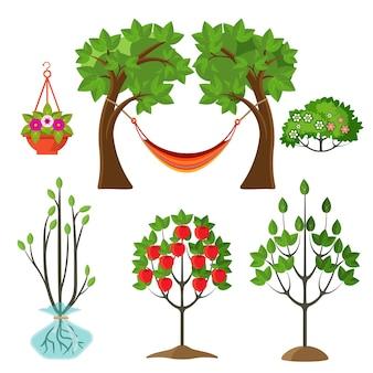 원예 개념의 여름 식물 세트입니다. 사과 나무의 성장 단계, 꽃이 든 바구니, 가지 벡터 일러스트레이션 사이의 해먹