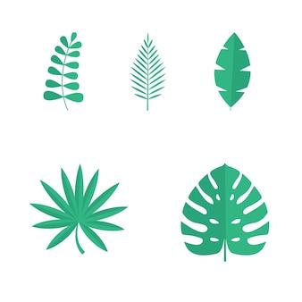 여름 열 대 잎 흰색 배경에 고립의 집합입니다. 벡터 일러스트 레이 션. eps10