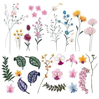 Set of Summer wild  Floral