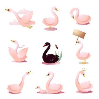 Набор лебедей в разных позах. иллюстрация в плоском мультяшном стиле.
