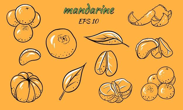 귤 세트. 만다린, 조각, 잎, 껍질.