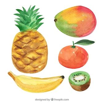 水彩で描かれたおいしいフルーツのセット